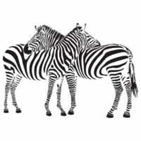 """Виниловая наклейка """"Две зебры"""""""